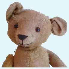 Old Mohair Teddy Bear, Much Loved