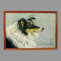Lovely Vintage Pastel of a Collie Dog, Signed
