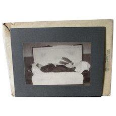 c1880-90s Post Mortem Photograph with Original Envelope