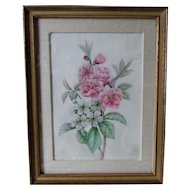 Lovely Original Floral Watercolor on Vellum, Flower Study, Signed MAG, Dated 1835