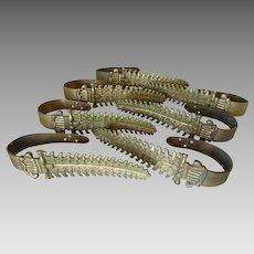 Set of Seven 19thC Gilt Bronze Curtain Tiebacks with Fern Motif