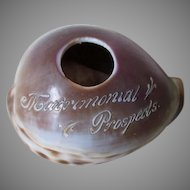 Whimsical Antique Folk Art Sea Shell Carving, Matrimonial Prospects