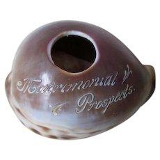 Whimsical Antique Folk Art Sea Shell Carving, Matrimonial Prospects