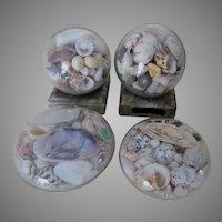 Antique Sea Shell Paperweights, Nautical, Sailor Art Souvenirs