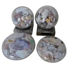 Antique Sea Shell Paperweights, Nautical, Sailor Art Souvenirs