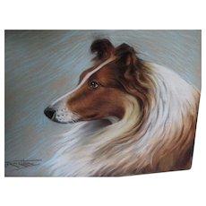Lovely Art Deco Pastel of a Collie Dog, Signed Illustration