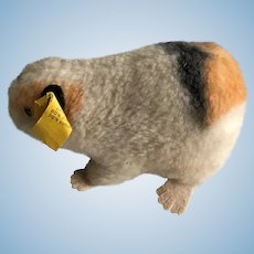 """Vintage Steiff Guinea Pig """"Swinny"""""""