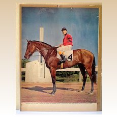 10X13 Color Print Race Horse Citation & Jockey Arcaro Up