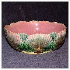 Large Etruscan Majolica 8.25 Inch Bowl Covered with Shells, Griffen Smith and Hill
