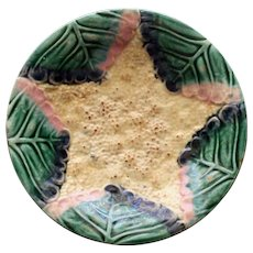 Antique Etruscan Majolica Plate, Star Cauliflower, Griffen Smtih & Hill