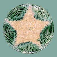 Antique Etruscan Majolica Plate, Star Cauliflower, Griffen Smtih & Hill