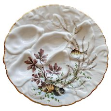 Antique Oyster Plate with Seaweed, Shells and Fish, Mark of 19th Century Retailer