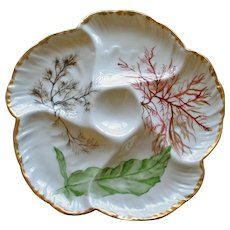 Antique Charles Field Haviland Limoges Oyster Plate, Seaweed Decoration