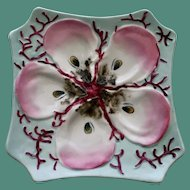 Antique Ice Blue Oyster Plate with Coral and Pink Shaded Wells