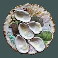 "Antique Haviland & Co. Limoges ""Turkey"" Oyster Plate, Seaweed Decoration"