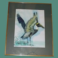 Watercolor of Pelican by Paul Voss