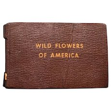 Wild Flowers of America by Jane Harvey, Illus. by Irving Lawson 1932