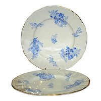 "Pair Royal Worcester 7.5"" Salad/Dessert Plates with Feathery Floral Sprays"
