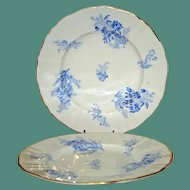 """Pair Royal Worcester 7.5"""" Salad/Dessert Plates with Feathery Floral Sprays"""