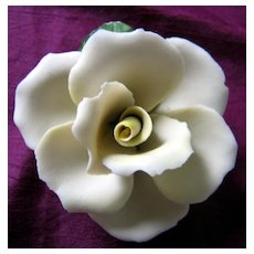 Pale Creamy Yellow Single Rose in Full Bloom Napoleon Capodimonte