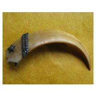 Claw or Talon