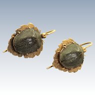 14 K Victorian Natural Scarab Earrings
