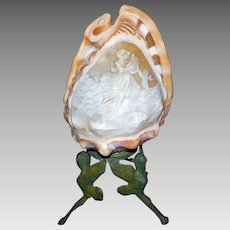 Italian Cameo Carved Conch Shell Light on Brass Base