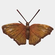 Vienna Bronze figure modelled  as a brown butterfly with white dot, early 20th century