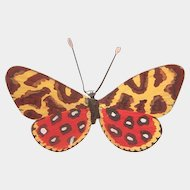 Lovely  and rare Vienna Bronze figure modelled as a red and yellow butterfly, early 20th century