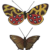 Two Vienna Bronze butterflies, early 20th century