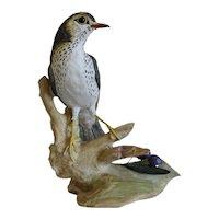 Vintage CapodiMonte porcelain bird, 20th century
