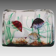 Cenedese glass block aquarium attributed to Riccardo Licata, ca. 1950