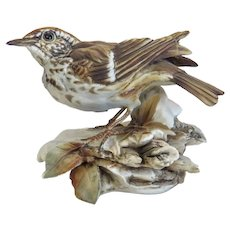 Vintage CapodiMonte porcelain bird, early 20th century
