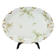 Haviland Limoges France Oval Serving Platter Schleiger 67