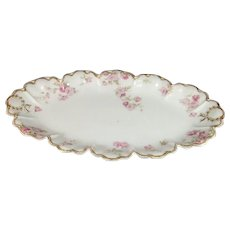 Haviland Limoges France Fish Platter Schleiger 39-3