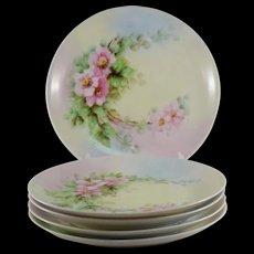 Hutschenreuther Salad Dessert Plates, Set of 5, Pink Flowers