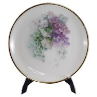 C. Tielsch Altwasser Decorated Plate