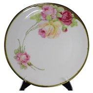 Moschendorf Bavaria Floral Decorated Plate