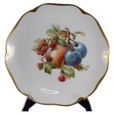 Rosenthal Selb Bavaria Decorated Plate
