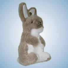 "Steiff 6"" Plush Bunny, Rabbit ~ Near Mint W/Tag"