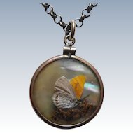 Antique Butterfly or Moth Botanical Double Sided Necklace With Shell Background