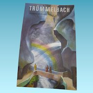 Vintage 1930s Travel Brochure Trummelbach Falls Scheidegg Hotels Switzerland
