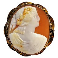 Cameo pin twisted ribbon wire frame