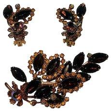 Rhinestone brooch pin clip earring set fall colors