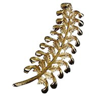 1950's Long Gold-Plated Fern Brooch Pin