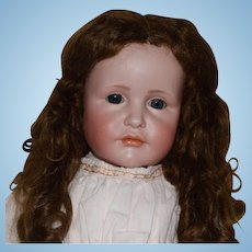 """Kammer & Reinhardt Bisque Head Character Doll """"Gretchen"""" Mold 114 with Glass Eyes"""