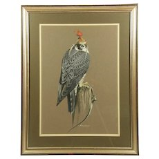 Richard Ward (Irish) Peregrine Falcon Original Acrylic Art