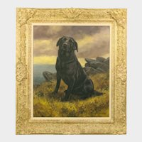 John Trickett (British b. 1953) Portrait of a Black Labrador Dog Oil on Canvas