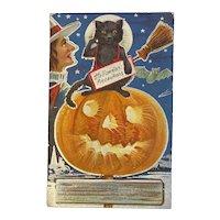 Nash Halloween Precautions Postcard Black Cat Witch JOL Jack O Lantern Embossed