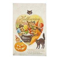 Stecher Litho Co Halloween Postcard 216 E Witch Cauldron Black Cats JOL Jack O Lantern Donkey Elf Costume Part Good Luck